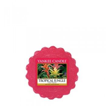 TART DA FONDERE TROPICAL JUNGLE YANKEE CANDLE